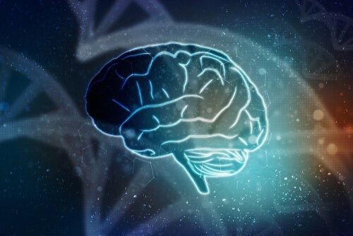 رواننشاسی عصبی